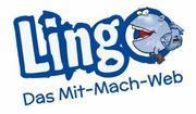 lingo_net.JPG