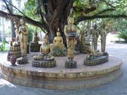 Vientiane - Klostergarten