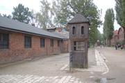 Auschwitz Lagerstraße